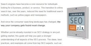 SEO-Learning-from-Expert-300x153