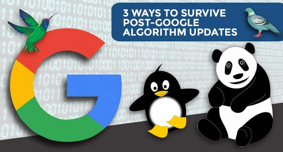 3 WAYS TO SURVIVE POST-GOOGLE ALGORITHM UPDATES
