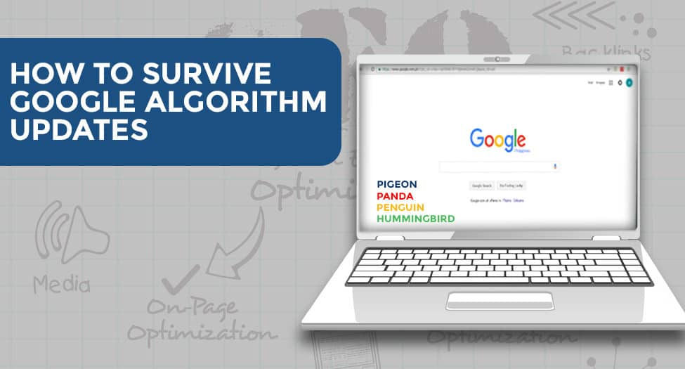 HOW TO SURVIVE GOOGLE ALGORITHM UPDATES